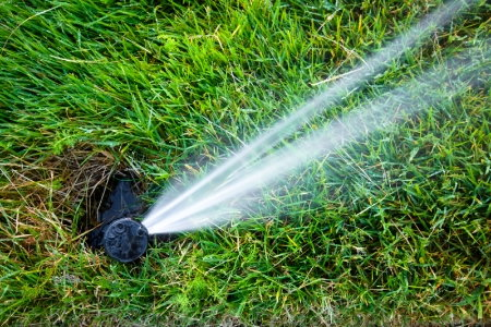 Pros And Cons Of Different Irrigation Systems as well S Vegetable Garden Drip Irrigation Kit further Garden Drip System moreover Evergreen Tech Irrigation And Landscaping Boca Raton likewise How To Install Drip Irrigation For Raised Beds. on small garden sprinkler system