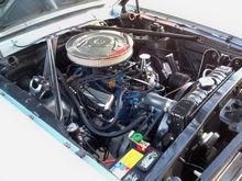 289 V8 original motor.