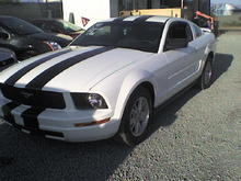 new 'stang!