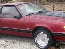 Davids Mustang 2