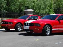 2008 GT 2006 GT