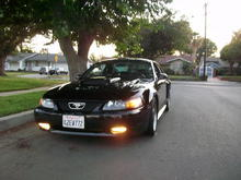before the HID foglights