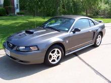 04 40th Ann. V6 Mustang