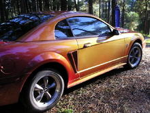 1999 Cobra SVT