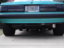 Mustang 010