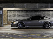 Cobra New 5