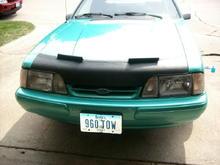 Mustang 019