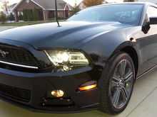 stang front left 800px