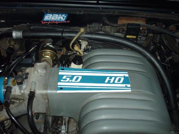 Mustang intake plaque (2)