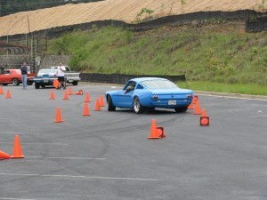 Muttstang Autocrossing
