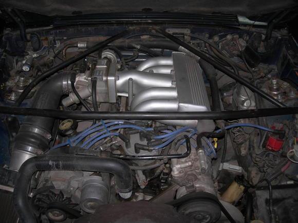DSCN4366