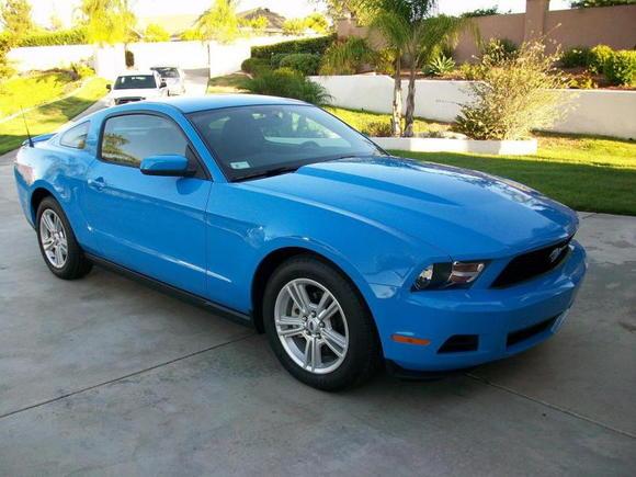 Mustang 0061