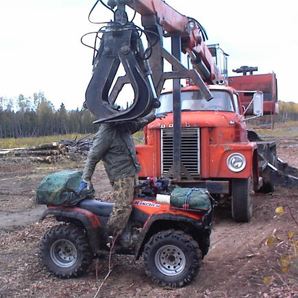 OOHHHHH NOOOOOO! This is what happens when you get too close to logging machinery!