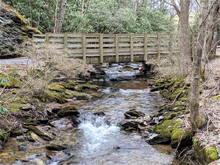 Virginia Creeper Trail - Spring 2021
