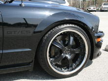 Saleen Big Brake Kit