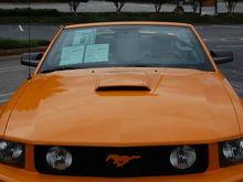 orangeboss 006