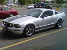 2006 S197 GT