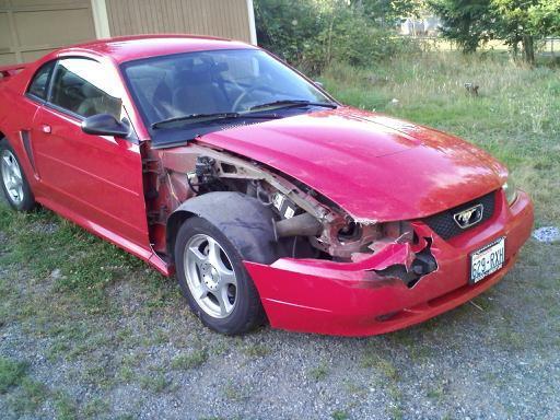 Sad Mustang...