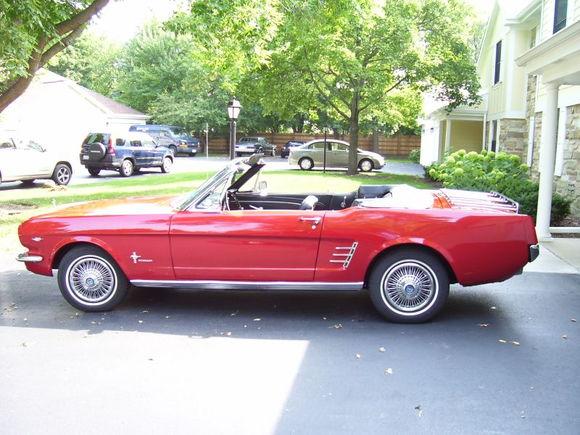 Mustang66 3