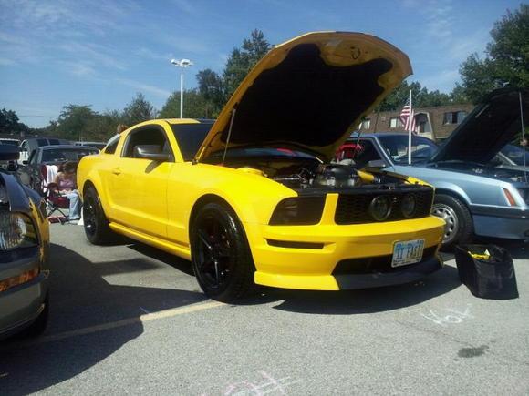 2005-2009 Best of Class - NEO Mustangs Show