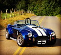 1965 Shelby Cobra  for sale $60,000