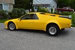 Custom Fierro/pantera  for sale $8,500