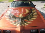 1980 Pontiac                                            Firebird  for sale $18,000