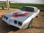 1980 Pontiac Firebird  for sale $24,949