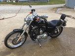 05 Harley 1200 Custom