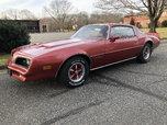 1977 Pontiac Firebird  for sale $15,000