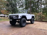 1975 Ford Bronco  for sale $49,500