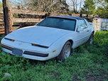 1989 Pontiac Firebird  for sale $5,000