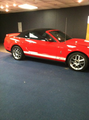2007 Mustang Shelby Convertible
