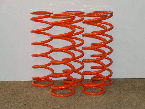 New Vogtland 225#, 16 X 5 inch Rear Springs  for Sale $40