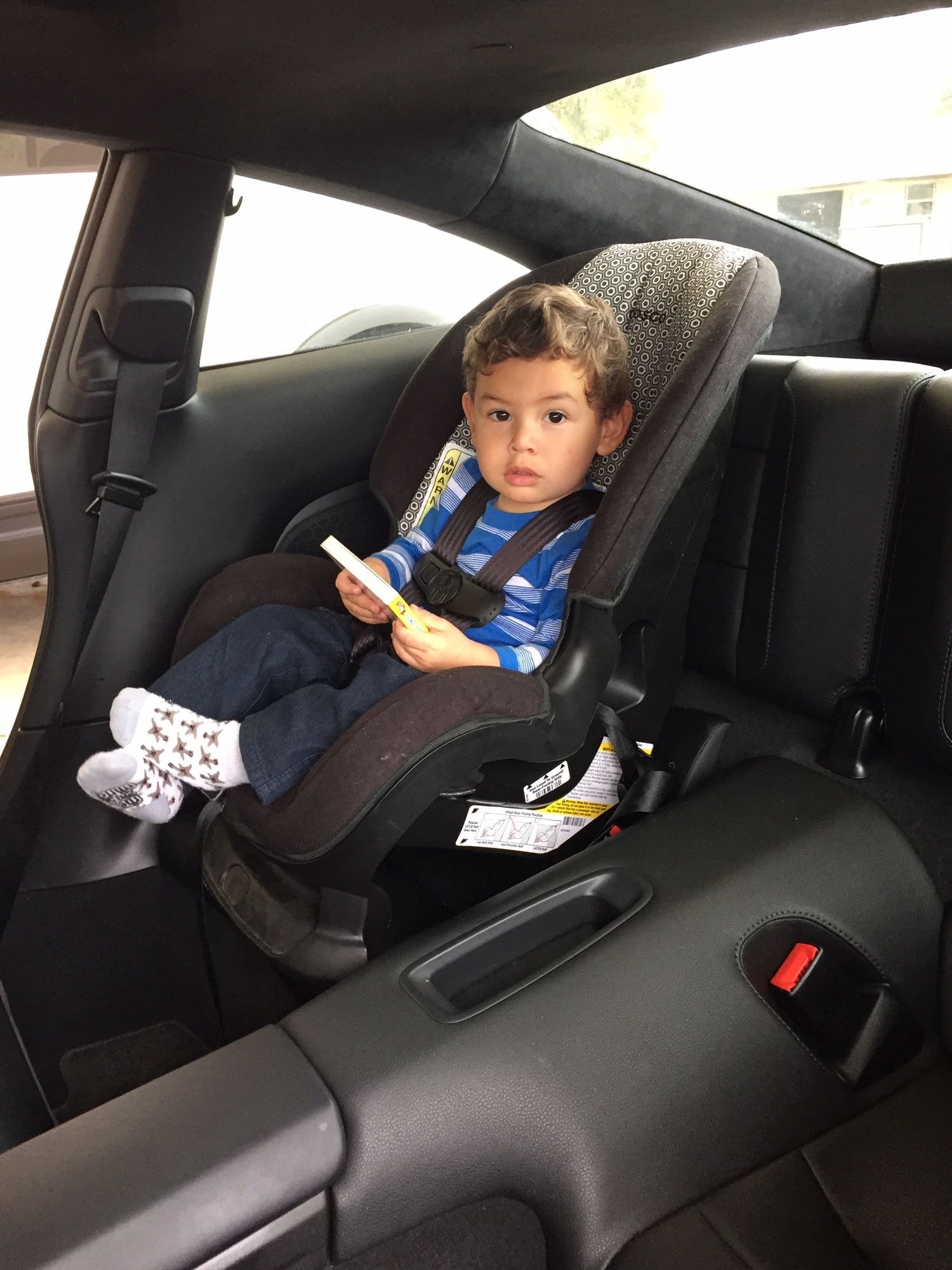 991 Child Infant Seats Page 3 Rennlist Porsche