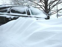 Snow February 2011
