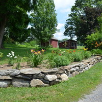 This was after I had bought and planted 11 daylilies the summer of 2016. this photo was in July of 2017.