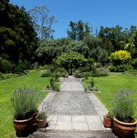 Garden with a Cafe
