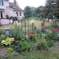 Shadeast garden border