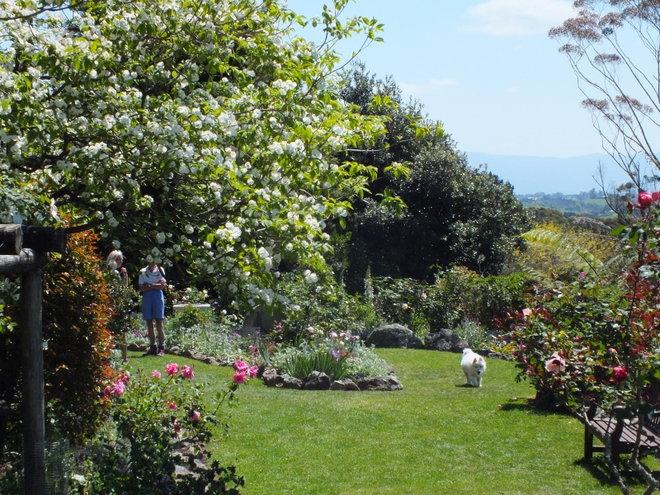 Heritage Rose Garden