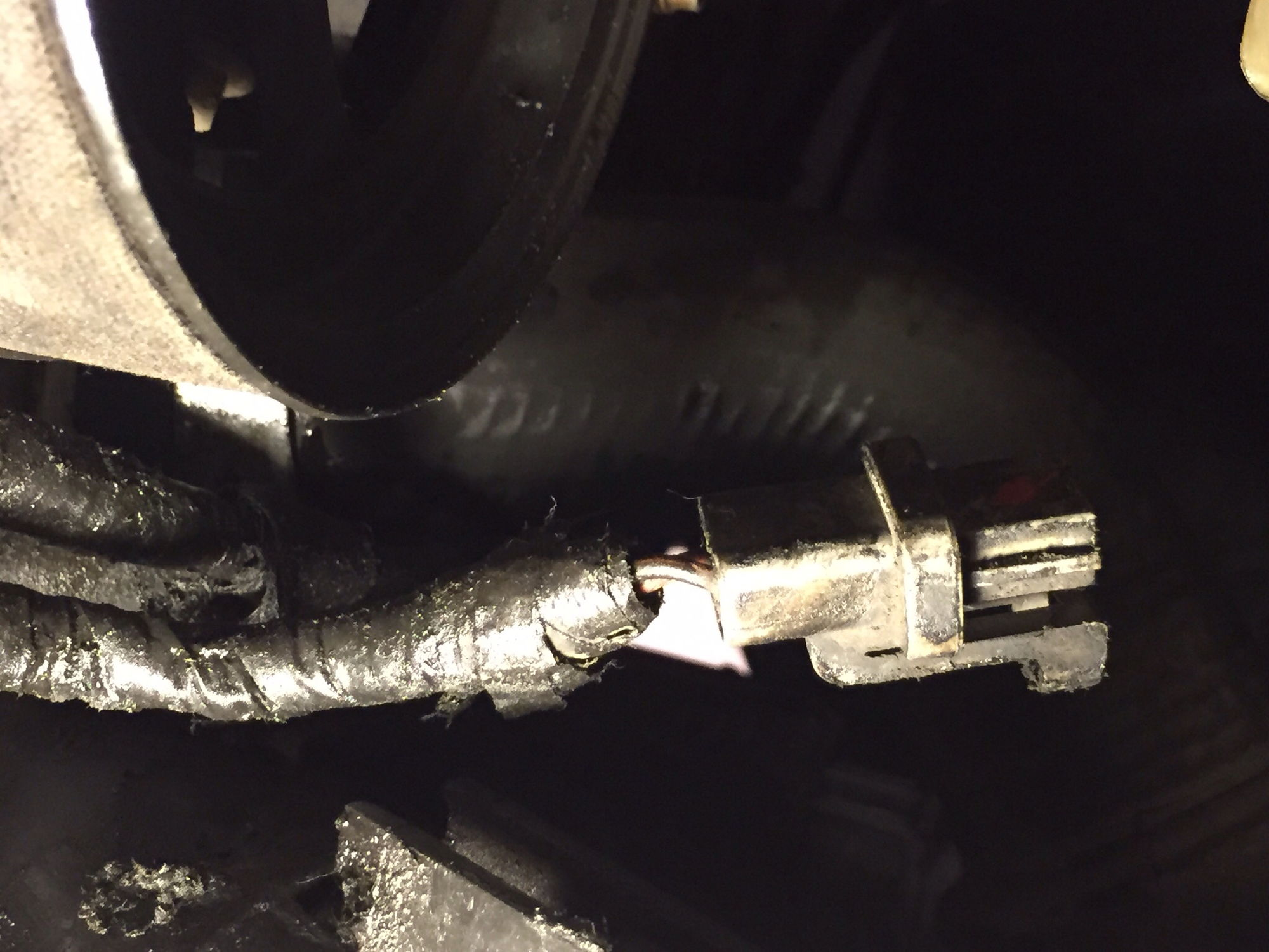 Lose Plug By Oil Sending Unit  2000 F150