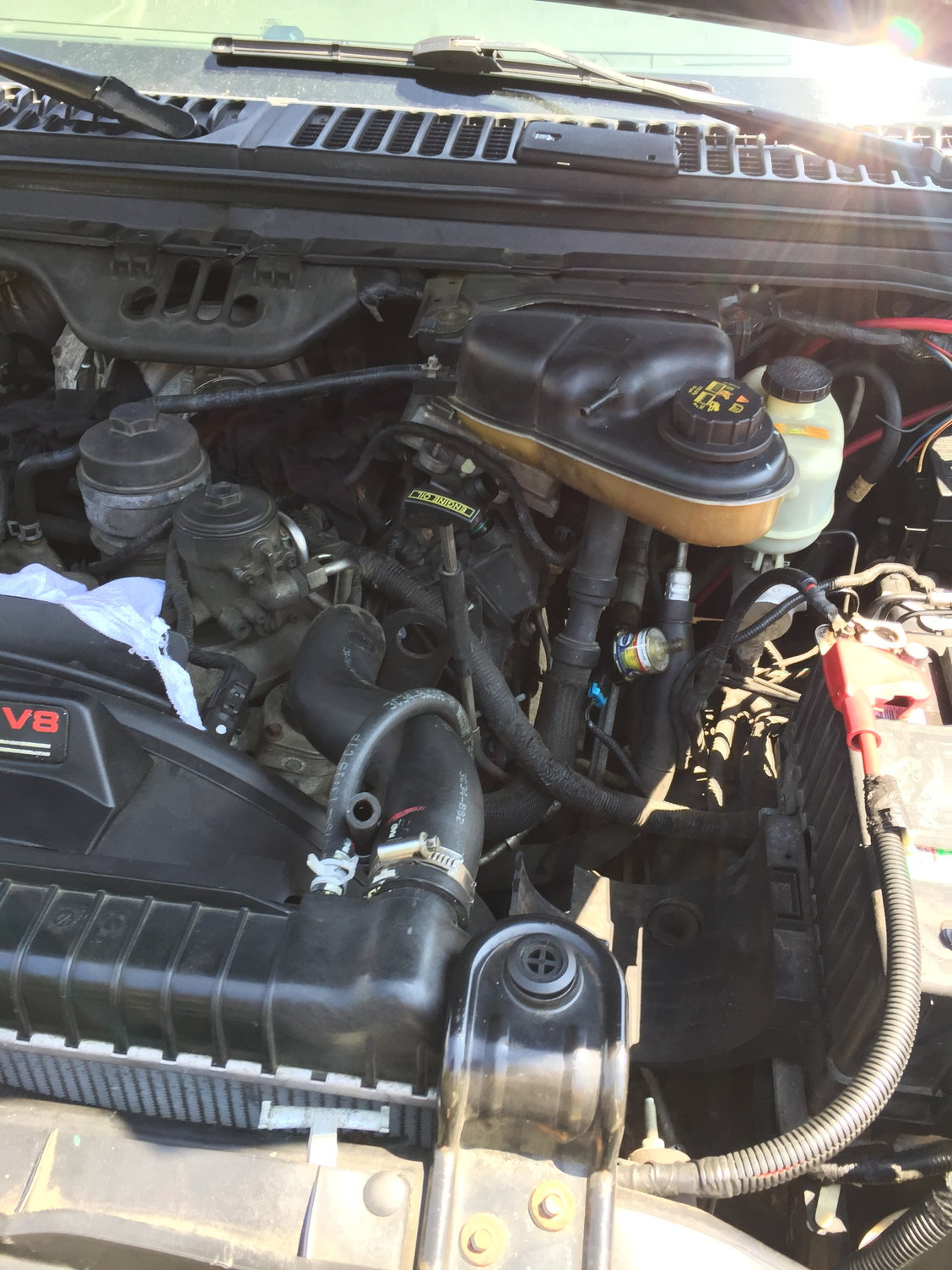Loud whining sound when I accelerate (Help!) - Ford Truck