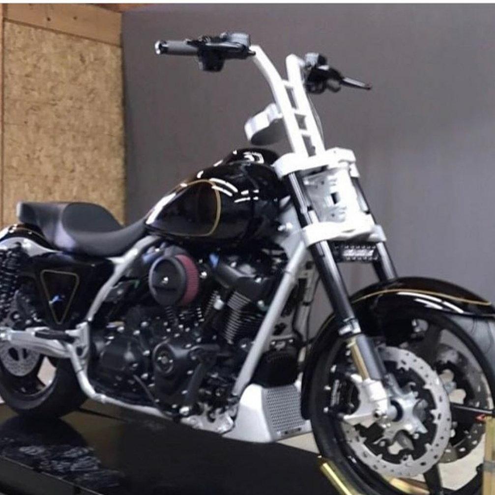 Performance baggers - Harley Davidson Forums