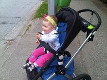 Untitled Album by *Izzy's*Mommy* - 2012-08-18 00:00:00