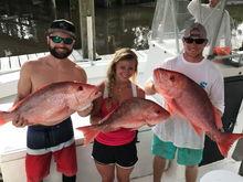 Fishing 7817