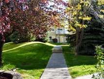 1 Bedroom Apartments for rent in Pullman, WA