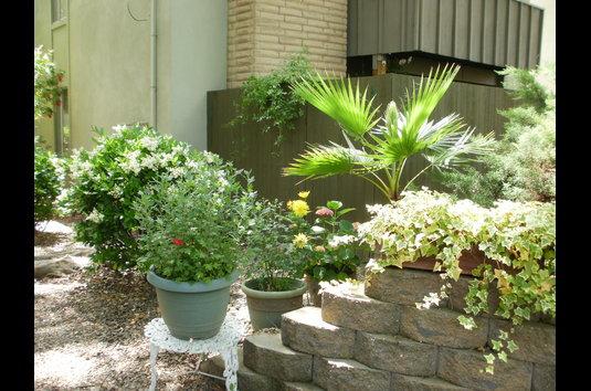 Reviews & Prices for Village Green Apartments, Sacramento, CA