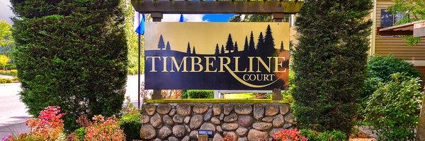 Timberline Court