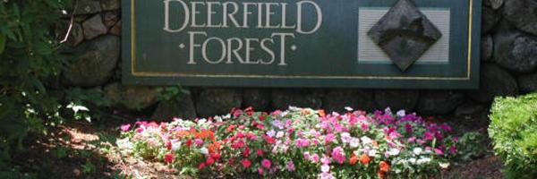 Deerfield Forest