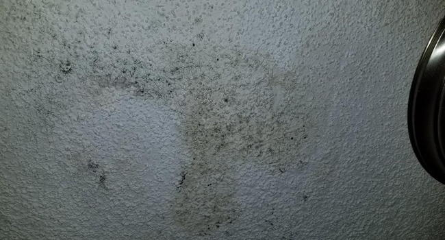 Mold issue